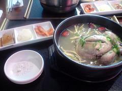 ginseng-chicken-zozo2