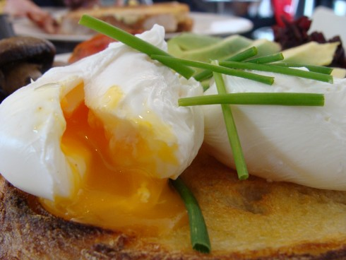 poached eggs at Spinifex