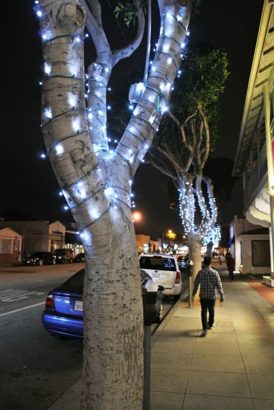Streetlights in Santa Monica
