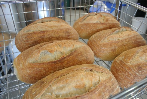 Country White Candied Bakery sourdough